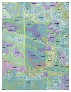 soil info